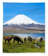 Lake Chungara Chilean Andes Fleece Blanket