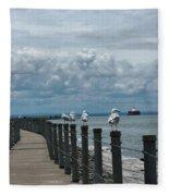 Lake Erie Gulls Fleece Blanket