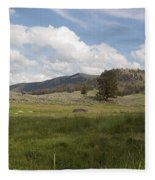 Lamar Valley No. 2 Fleece Blanket