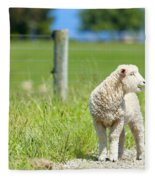 Lamb On The Farm Fleece Blanket