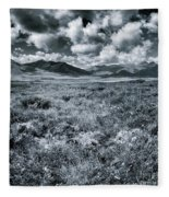 Land Shapes 24 Fleece Blanket by Priska Wettstein