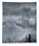 Land Shapes 5 Fleece Blanket