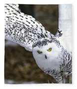 Landing Of The Snowy Owl Where Are You Harry Potter Fleece Blanket