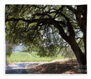 Landscape At The Jack London Ranch In The Sonoma California Wine Country 5d24583 Fleece Blanket
