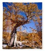 Larch Tree Frames Prusik Peak Fleece Blanket