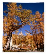 Larch Trees Frame Prusik Peak Fleece Blanket