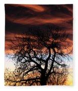Large Cottonwood At Sunset Fleece Blanket