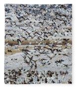 Large Flocks Of Migratory Birds Stop Fleece Blanket