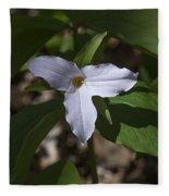 Large-flower Trillium Dspf277 Fleece Blanket