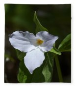 Large-flower Trillium Dspf279 Fleece Blanket