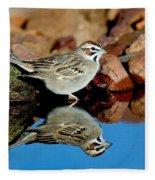 Lark Sparrow Chondestes Grammacus Fleece Blanket