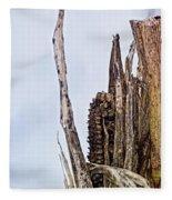 Last Of The Corn Fleece Blanket