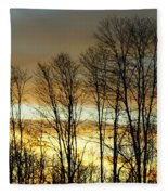 Last Rays Of Light Fleece Blanket