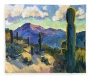 Late Afternoon Tucson Fleece Blanket