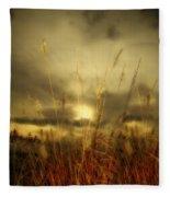 Late Summer Sun Through The High Grass Fleece Blanket
