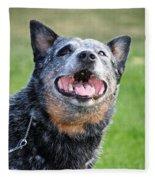 Laughing Dog Fleece Blanket