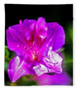 Lavendar Beauty Fleece Blanket