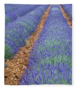 Lavendel 2 Fleece Blanket