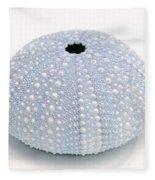 Blue Sea Urchin White Fleece Blanket