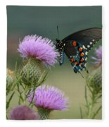 Lavender Thistle And Pipevine Swallowtail Butterfly Fleece Blanket