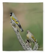 Lawrences Goldfinch Pair Perched Fleece Blanket