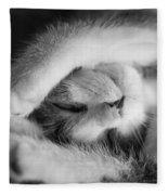 Lazy Day Bw Fleece Blanket
