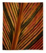 Cannas Plant Leaf Closeup Fleece Blanket
