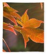 Leaf In The Sun Fleece Blanket