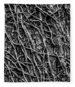 Leafless Ivy Fleece Blanket