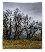 Leafless Trees Fleece Blanket