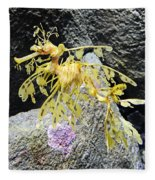 Leafy Seadragon Fleece Blanket