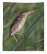 Least Bittern Fleece Blanket