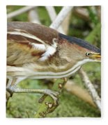 Least Bittern Female Feeding Fleece Blanket