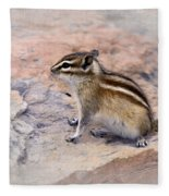 Least Chipmunk #2 Fleece Blanket