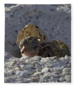 Least Tern Hatchling Fleece Blanket