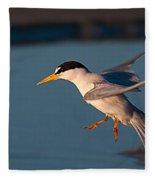 Least Tern In Flight Fleece Blanket