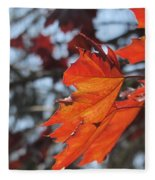 Leaves Backlit 3 Fleece Blanket