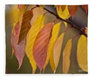 Leaves In Fall Fleece Blanket
