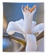 Lemon Blossom Fleece Blanket