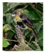 Lemon-rumped Tanager Molting Fleece Blanket