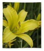Lemon Yellow Daylily Blossom Fleece Blanket