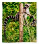 Lemur In The Green Fleece Blanket