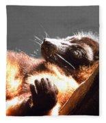 Lemur Lounging Fleece Blanket