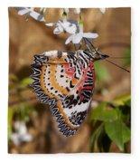 Leopard Lacewing Butterfly Dthu619 Fleece Blanket