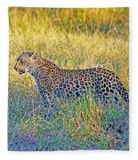 Leopard On The Prowl Fleece Blanket