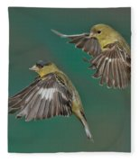 Lesser Goldfinch Pair In The Air Fleece Blanket