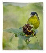 Lesser Goldfinch  Fleece Blanket