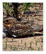 Lesser Nighthawk Chordeiles Acutipennis Fleece Blanket