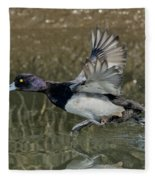 Lesser Scaup Drake Fleece Blanket