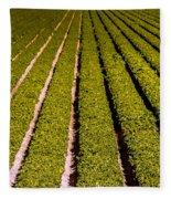 Lettuce Farming Fleece Blanket